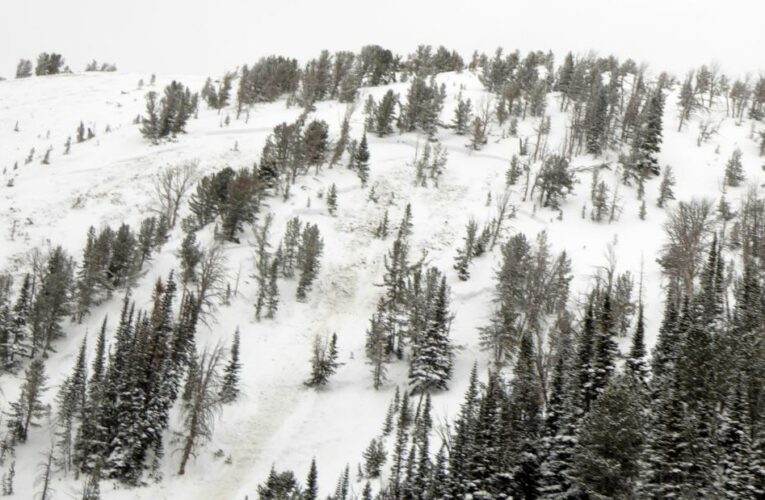 It's the US' deadliest avalanche season in years. Experts say Covid is partially to blame
