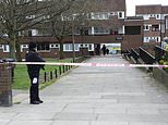 Child dies after fire at block of flats in London