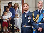 Princess Diana statue could drive Prince Harry and Prince William APART, royal expert says