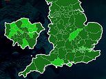 Covid cases fell in ALL of England's 149 authorities last week, map reveals